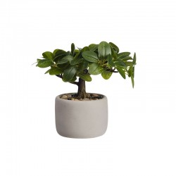 Bonsai FIcus Artificial – Deko Verde E Cinza - Asa Selection
