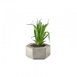 Artificial Plant Succulent I - Deko Green - Asa Selection