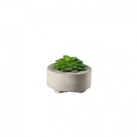 Planta Artificial Suculentas II - Deko Verde - Asa Selection ASA SELECTION ASA66241444