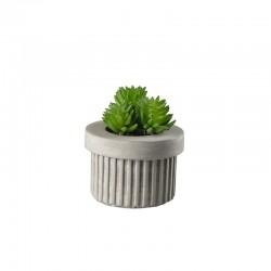 Planta Artificial Suculentas III - Deko Verde - Asa Selection