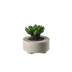 Artificial Plant Succulent V - Deko Green - Asa Selection