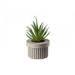 Planta Artificial Suculentas VI - Deko Verde - Asa Selection