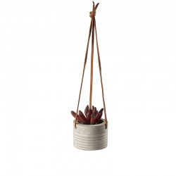 Hanging Succulent I - Deko Red - Asa Selection