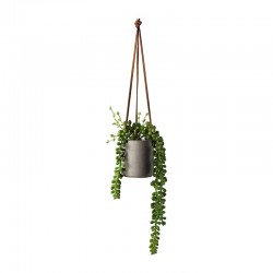 Hanging Succulent II - Deko Green - Asa Selection