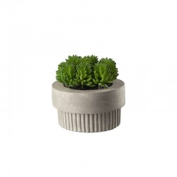 Planta Artificial Maxi Suculentas III - Deko Verde - Asa Selection