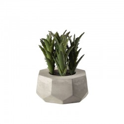 Maxi Succulent Artificial Plant IV - Deko Green - Asa Selection