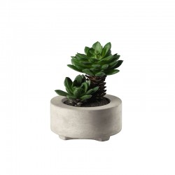 Maxi Succulent Artificial Plant V - Deko Green - Asa Selection