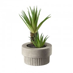 Maxi Succulent Artificial Plant VI - Deko Green - Asa Selection