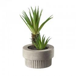 Planta Artificial Maxi Suculentas VI - Deko Verde - Asa Selection