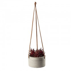 Maxi Hanging Succulent I - Deko Red - Asa Selection