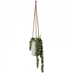 Maxi Hanging Succulent II - Deko Green - Asa Selection