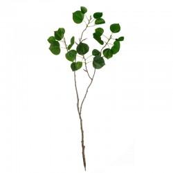 Haste Folhas 79cm – Deko Verde - Asa Selection