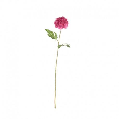 Tallo Artificial Clavel Rosa 74cm – Deko - Asa Selection ASA SELECTION ASA66669444