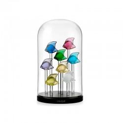 Acuario para 8 Peces Decorativos Transparente Y Negro - Lalique
