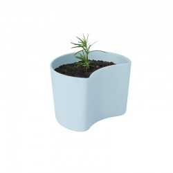 Vaso com Sementes Azul - Your Tree - Rig-tig