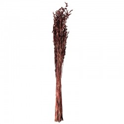 Oat Grass Bouquet - Dried Flowers Brown - Asa Selection ASA SELECTION ASA66313444