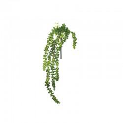 Succulent Hanging 50cm - Deko Green - Asa Selection