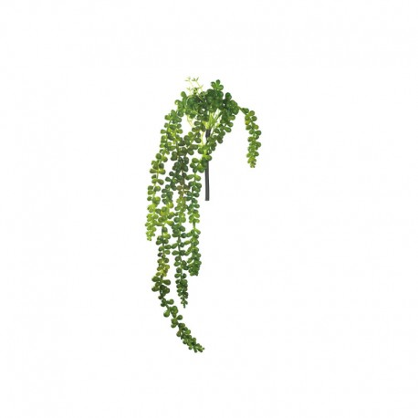 Succulent Hanging - Deko Green - Asa Selection ASA SELECTION ASA11630000