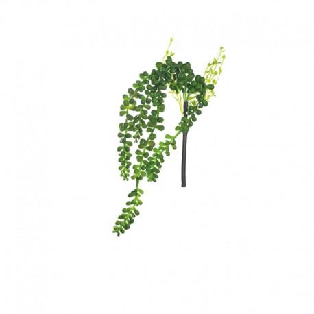 Succulent Hanging 30cm - Deko Green - Asa Selection ASA SELECTION ASA11631000