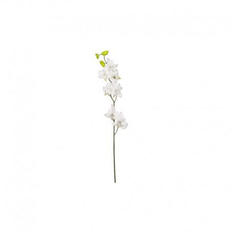 Tallo Orquídea - Deko Blanco - Asa Selection ASA SELECTION ASA11845000