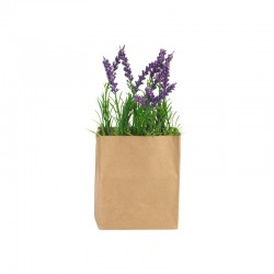 Lavender In Paperbag Rectangular - Deko - Asa Selection | Lavender In Paperbag Rectangular - Deko - Asa Selection