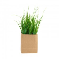 Grass In Paperbag Rectangular - Deko - Asa Selection | Grass In Paperbag Rectangular - Deko - Asa Selection