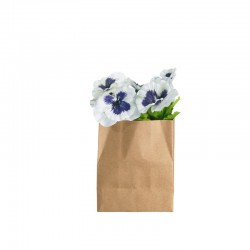 Pansy In Paperbag Rectangular - Deko - Asa Selection | Pansy In Paperbag Rectangular - Deko - Asa Selection