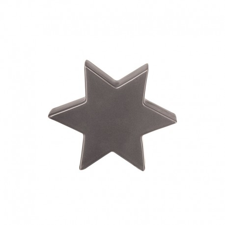 Decorative Star 10cm Grey - Xmas - Asa Selection ASA SELECTION ASA6110048