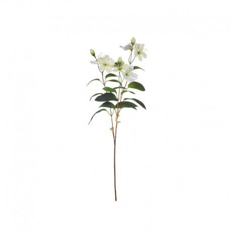 Haste Rosa de Natal 58cm - Deko Branco - Asa Selection ASA SELECTION ASA66235444