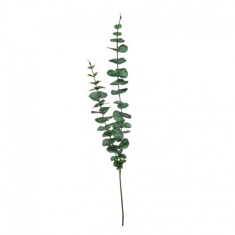 Haste de Eucalipto 83,5cm - Deko Verde - Asa Selection ASA SELECTION ASA66236444