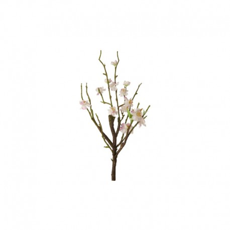 Bloom Spray Twig - Deko Rose - Asa Selection ASA SELECTION ASA66461444