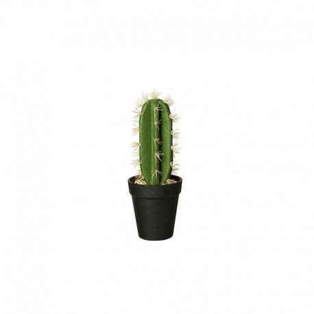 Vaso Com Cacto 'Euphorbia Ingens' 26cm - Deko Verde E Preto - Asa Selection | ASA SELECTION
