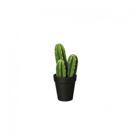 Vaso Com Cacto 'Pachycereus Pringli' 22cm - Deko Verde E Preto - Asa Selection | ASA SELECTION