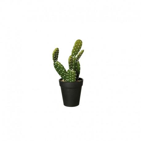 Vaso Com Cacto 'Opuntia Ficus' 26cm - Deko Verde E Preto - Asa Selection ASA SELECTION ASA66204444