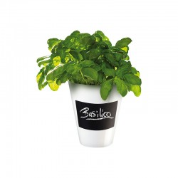 Planter With Chalk Decal - Memo White - Asa Selection ASA SELECTION ASA4509147