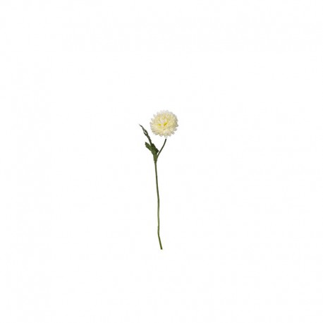 Single Daisy Twig 30,5cm - Deko White - Asa Selection ASA SELECTION ASA11837000